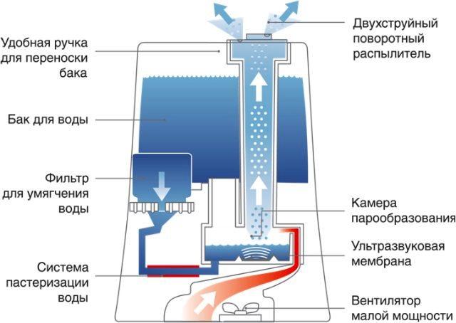 mojki-ultrazvukovye